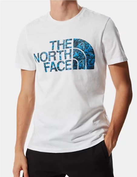 Camiseta The North Face Standard Blanca Hombre